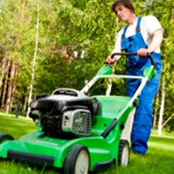 Landscapers near Wembley