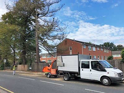 Emergency Tree Work in Stanmore